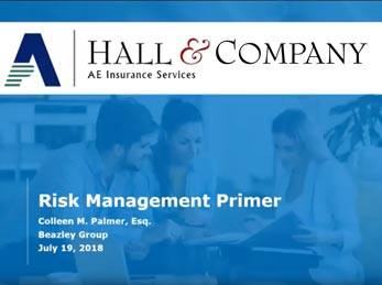 Risk Management Primer
